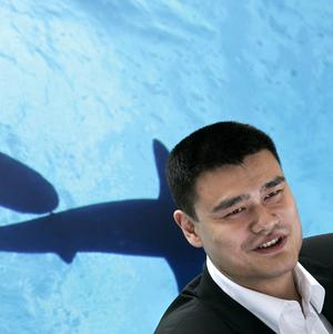 Recently retired Chinese NBA star Yao Ming speaks at a press conference for a campaign against eating shark fins (AP)