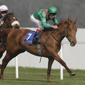 Johnny Murtagh swoops on Mesariya