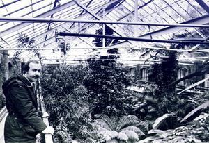 The Botanic Gardens' Tropical Ravine in all its beautiful and exotic glory back in 1982