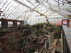The dig at the Tropical Ravine in Belfast's Botanic Park