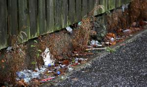 A groundbreaking anti-litter campaign set up by Craigavon Borough Council has been shortlisted for a key local government award after beating off competition from across the UK
