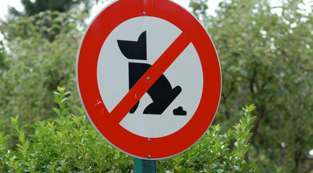 Bad business: a council sign forbidding dog fouling