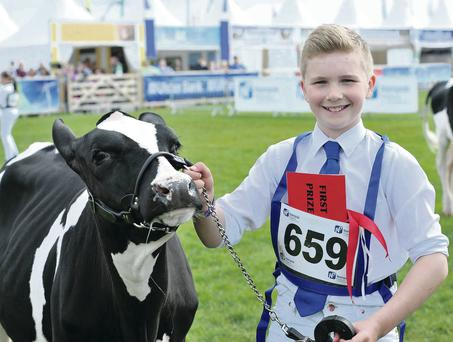 Brian Weatherup competed in the Junior Novice showmanship U13 handling