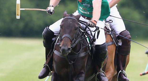 Princes Harry and William are keen polo players