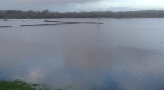 The flooded meadows at Woodend in Co Tyrone, which is part of the proposed route for the upgraded A5 between Derry and Dublin