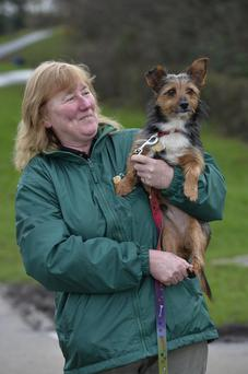 Former stray Archie with owner Julie Morris