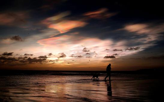A dog walker near Whitley Bay, Northumberland