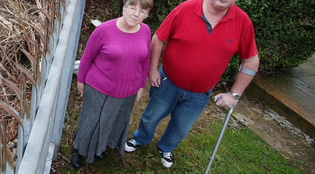 Liz and Adrian Atkinson at their home in north Belfast, which is being overrun by Japanese knotweed