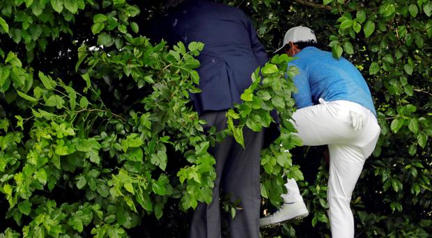 Rory goes hunting for his ball after yet another wayward drive yesterday