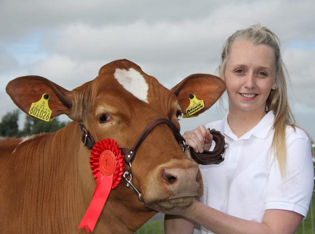 Lauren Kelly from Banbridge with her reserve Holstein champion at Saintfield Show