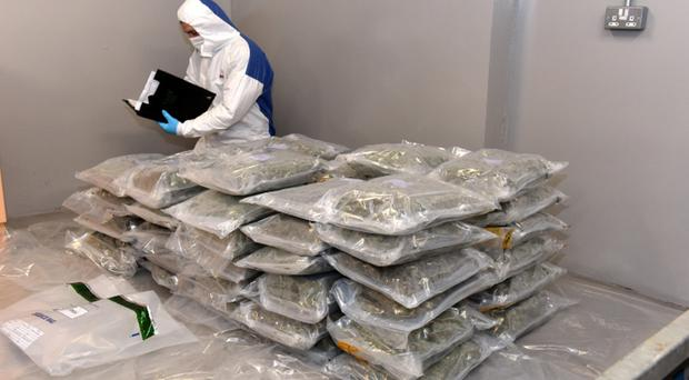 The haul of herbal cannabis seized at the weekend