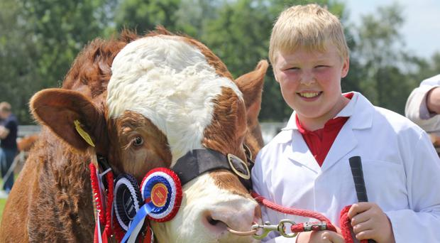 Thomas McAllister from Dungannon with the Simmental and interbreed champion