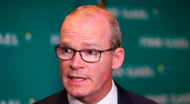 Irish Foreign Affairs Minister Simon Coveney