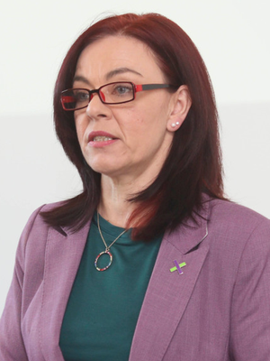 The motion proposed by Sinn Fein MLA Caoimhe Archibald was last night welcomed by Green Party leader Clare Bailey (pictured)