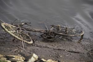 Some of the bikes dumped along one mile of the Lagan