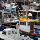 Fishing boats in Kilkeel harbour