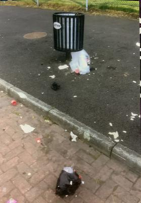 Litter seen spilling out of overflowing bins in Belfast's Ormeau Park has prompted a call for Belfast City Council to install new disposal facilities there