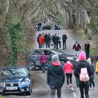 Pedestrians and cars at the Dark Hedges