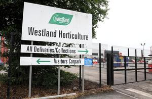 Westland Horticultural factory on the Granville Road in Dungannon