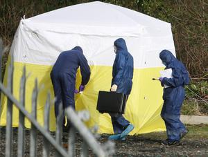The scene at the Bog Meadow, Belfast, where the body of Eddie Burns was discovered