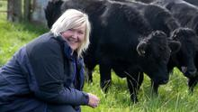 Sandra Hunter and some of her Dexter cattle with Dr Cliff Henry, National Trust area ranger