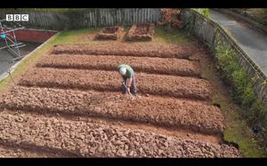 The transformation of his front lawn