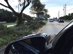 The trail of destruction in Florida