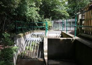 The storm drain, where Noah Donohoe had last been seen alive