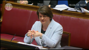 Former enterprise minister Arlene Foster said she did not write a blank check for the flawed RHI scheme (RHI inquiry/PA wire)