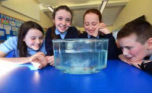 Pupils at St Mary's with their fish fry
