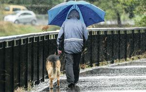 A dog-walker on the Lagan towpath caught in a downpour as the warm weather came to an end