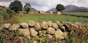 Traditional heritage: a drystone wall in the Mourne mountains