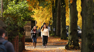 Golden brown: People enjoy a walk in the university area of Belfast as the autumn colours cover the trees