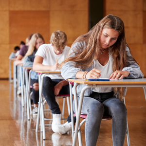 Today, we publish our annual guide on the GCSE performance of every post-primary school here that undertakes the examinations (stock photo)
