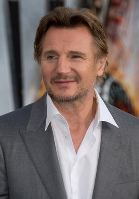 Star power: Liam Neeson appealed to the Executive in a video recording