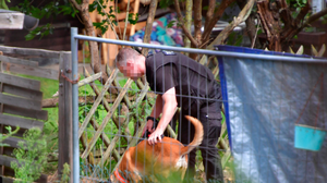 A police officer uses a detection dog while digging at an allotment as police continue to search for Madeleine McCann