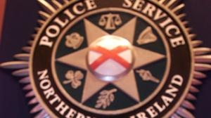 PSNI officers are appealing for anyone in the park at the time of the assault to come forward