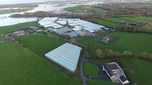 An aerial picture reveals the extent of flooding around the farm at Lough Neagh