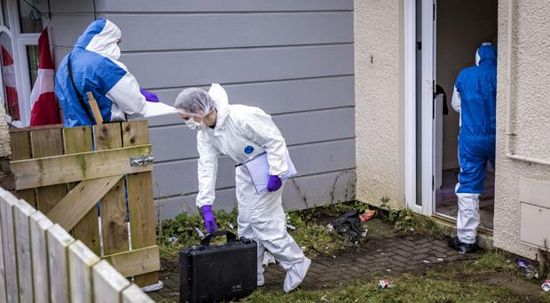 Forensic officers at the house in Glenbawn Avenue, west Belfast