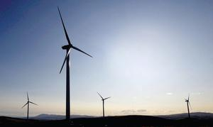 Campaigners challenged a decision to allow more than 100 turbines to be installed across three different areas on the Shetland Islands