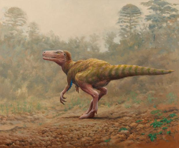Discovery: Two-legged meat-eater Sarcosaurus