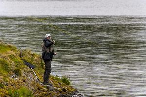 An angler fly fishing on the bank of Ballysallagh Lower Reservoir close to Bangor, Co Down (Liam McBurney/PA)