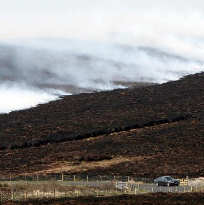 The public has been urged to be vigilant over gorse fires.