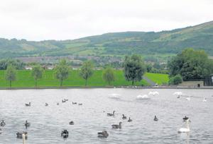 The disturbances happened in the Waterworks Park area of north Belfast