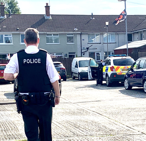 Probe: Police in Canberra Gardens in Newtownards after a report that shots were fired