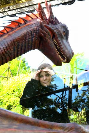 Visitors to Belfast Zoo yesterday marvel at the Game Of Thrones-themed animatronic dragon