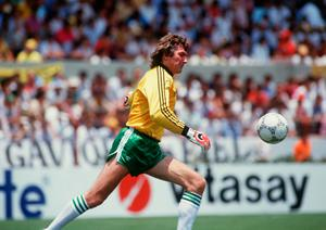 Pat Jennings in action during the 1986 World Cup