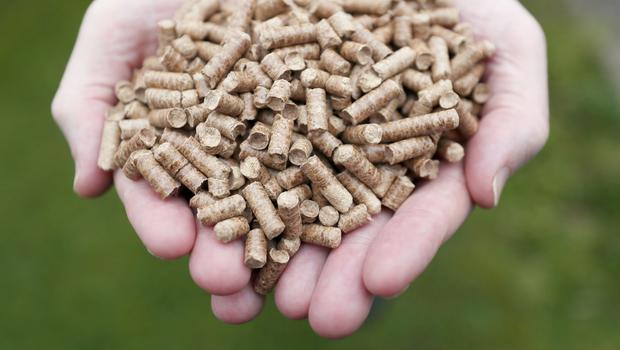 Eco-friendly wood chip boilers similar to the batches used as an incentive in Stormont's botched green energy scheme. Democratic Unionist leader Arlene Foster has defended her role in its introduction during the Renewable Heat Incentive (RHI) initiative inquiry at Stormont Parliament Buildings.