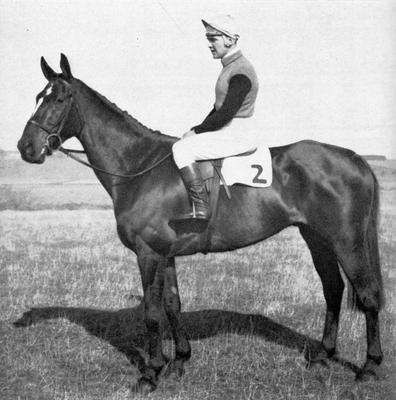 Pat McCarron won 244 times over jumps and 44 times on the flat in his illustrious racing career