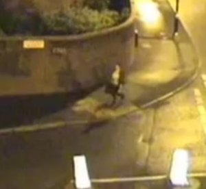 CCTV footage showing Christine Connor